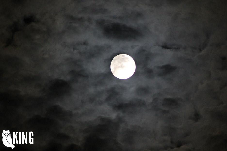 mcallen_moon